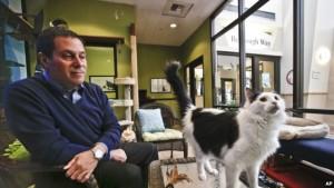 Gary Weitzman 300x169 - Tahukah Anda Arti Suara Kucing Pada Manusia ?