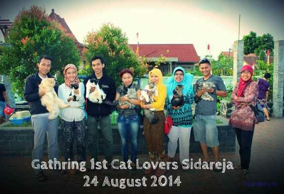 wpid 20150601022747 - Cat Lovers Sidareja, Cilacap