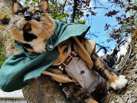 wpid kucinglucu ereneko 1.jpg - Ereneko, Kucing Lucu Tukang Cosplay