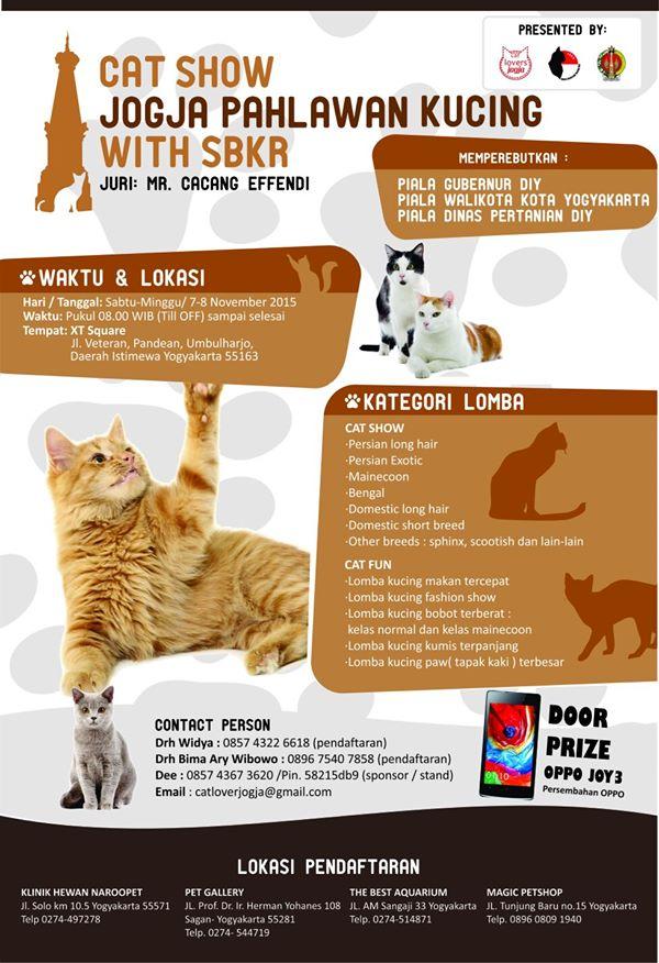 wpid wp 1445397771216 - Cat Show: Jogja Pahlawan Kucing With SBKR