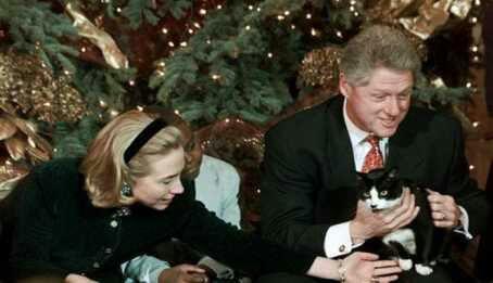 wpid 201511151733031 - Socks, Kucing yang Meluluhkan Hati Mantan Presiden Amerika Serikat