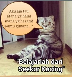 kucing tau halal haram 281x300 - Kucing Aja Tau Halal Haram, Masa Kamu Enggak?