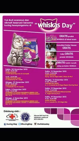 wpid wp 1448826786026 - Gathering Bandung Peduli Kucing Bersama Whiskas