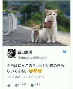 ibu dan anak kucing dalam perayaan neko no hi