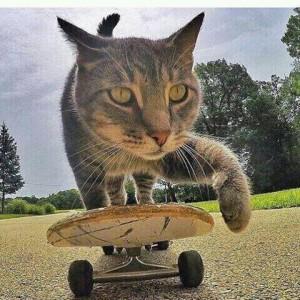 manny berpose di atas skateboard