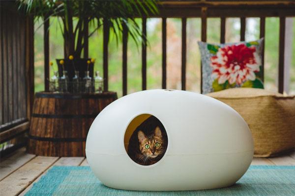 wpid wp 1455169115349 - Inspirasi Litter Box Unik untuk si Cantik