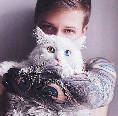 wpid wp 1458791456530 - Ini Manfaat Berinteraksi dengan Kucing