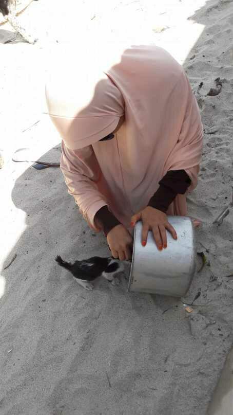 aunty desy memberi makan di sekitar pantai.jpg 1 - Desy Marlina Amin, 'Bidadari'  Kucing dan Anjing Liar di Nusa Tenggara Barat