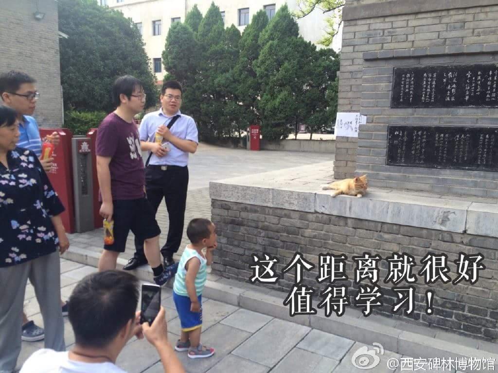 pengunjung di museum Xi'an