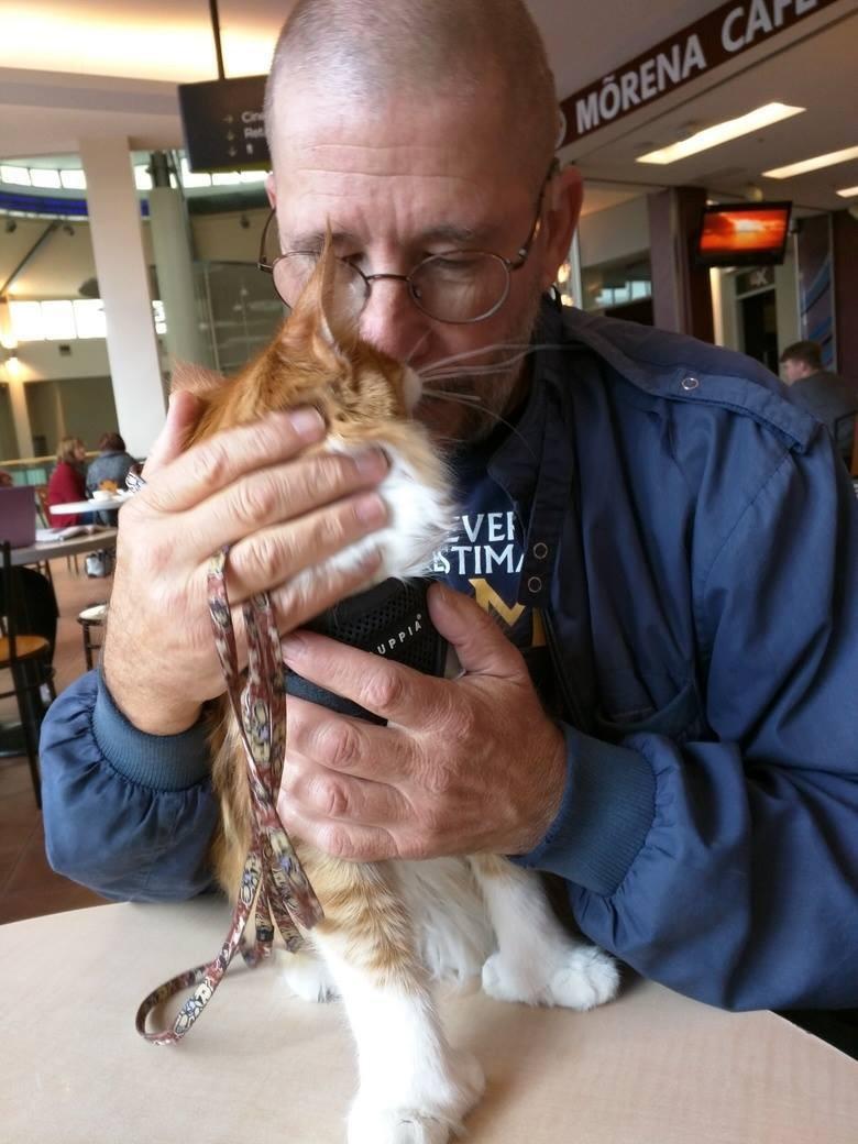 wp 1469082350517 - Skatty, Seekor Kucing Maine Coon yang Menjadi Navigator Pelaut Tuna Rungu