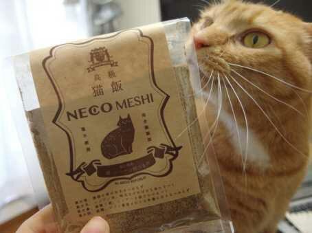 Neco Meshi