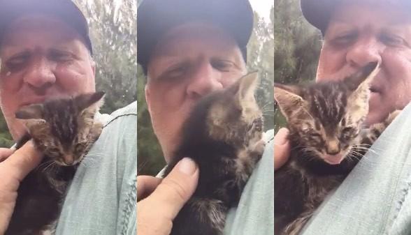 monte - Demi Nyawa Anak Kucing, Keluarga ini Rela Merusak Mobil Kesayangannya