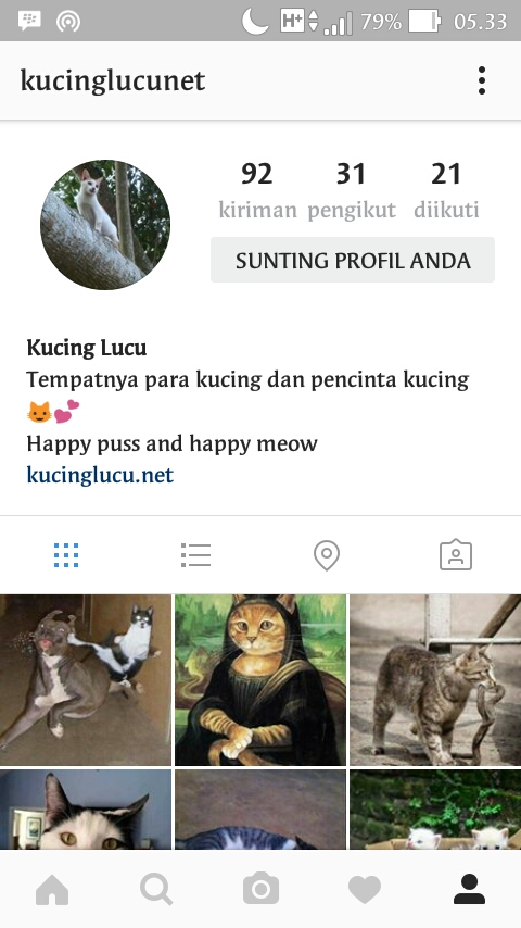 wp 1472250881717 - Akun Instagram Kucing Anti Mainstream yang Perlu Cat Lovers Follow