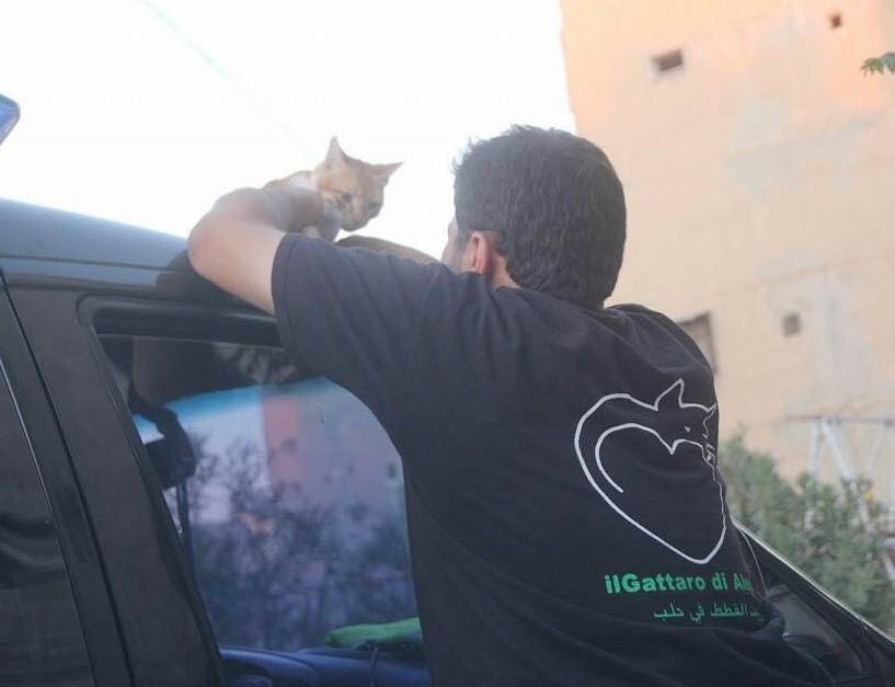 moh al jaleel - Mohammad Alaa Al Jaleel: Sang Penyayang Kucing dari Aleppo