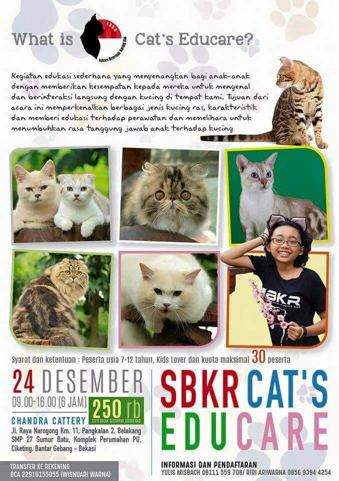 SBKR Cat's Educare 2016