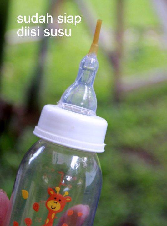 dot siap - Tutorial: Cara Membuat Dot Susu Untuk Bayi Kucing