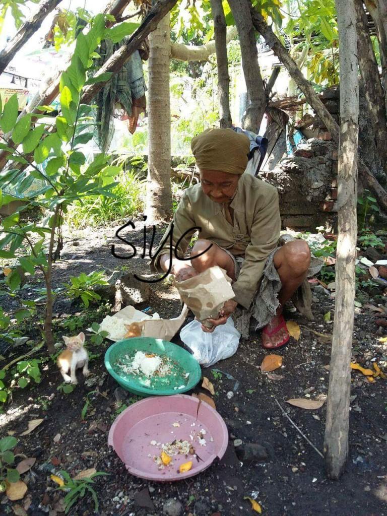 mbah 768x1024 - Mbah Miati, Nasi Bungkus dan Belasan Ekor Kucing