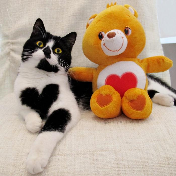 Zoe sangat menyukai boneka beruangnya.
